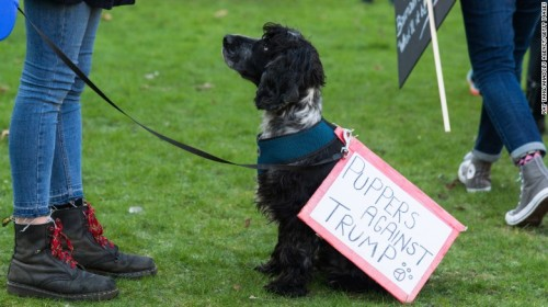 170121160541-02-womens-march-london-restricted-exlarge-169
