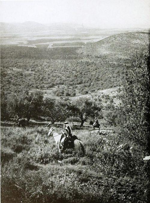 Dotan_1910